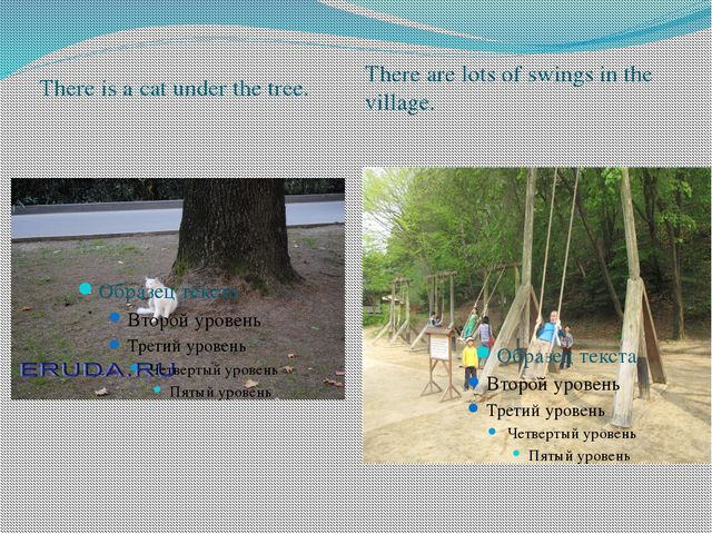 There is a cat under the tree. There are lots of swings in the village.