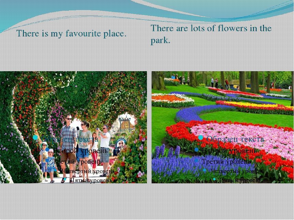 There is my favourite place. There are lots of flowers in the park.