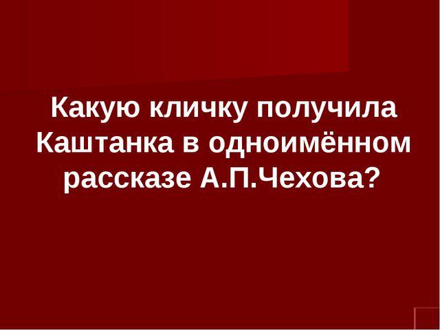 Какую кличку получила Каштанка в одноимённом рассказе А.П.Чехова?