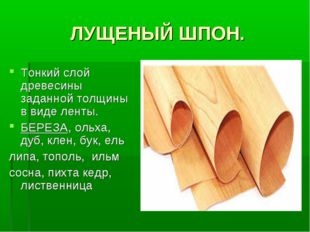 ЛУЩЕНЫЙ ШПОН. Тонкий слой древесины заданной толщины в виде ленты. БЕРЕЗА, ол