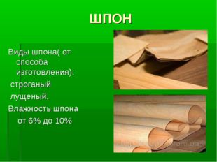 ШПОН Виды шпона( от способа изготовления): строганый лущеный. Влажность шпона