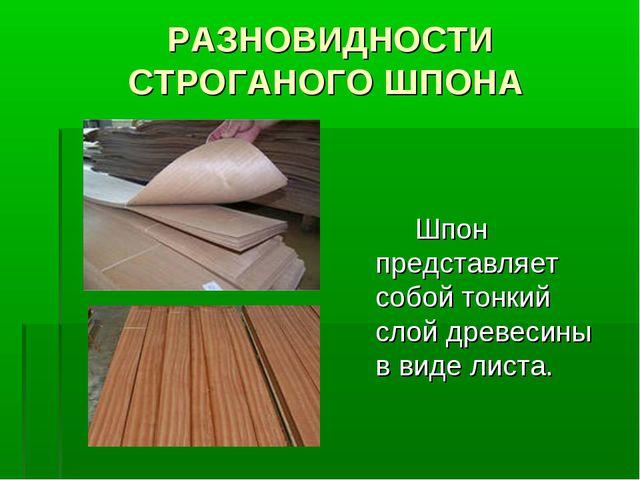 РАЗНОВИДНОСТИ СТРОГАНОГО ШПОНА Шпон представляет собой тонкий слой древесины...