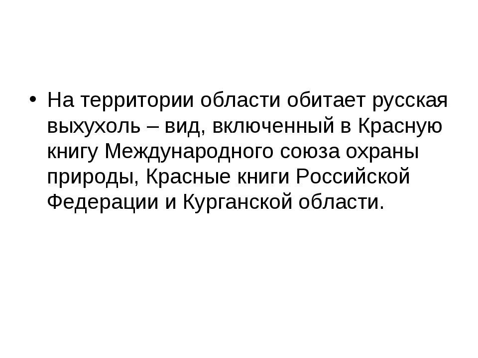На территории области обитает русская выхухоль – вид, включенный в Красную кн...
