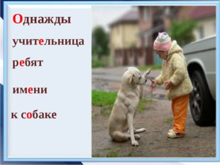 Однажды учительница ребят к собаке имени