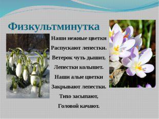 Физкультминутка Наши нежные цветки Распускают лепестки. Ветерок чуть дышит, Л