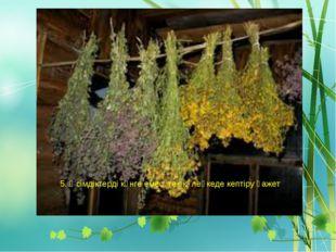 5. Өсімдіктерді күнге емес тек көлеңкеде кептіру қажет.