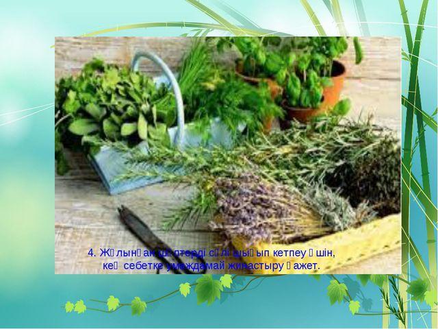 4. Жұлынған шөптерді сөлі шығып кетпеу үшін, кең себетке умаждамай жинастыру...