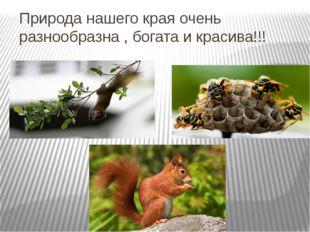 Природа нашего края очень разнообразна , богата и красива!!!