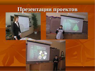 Презентации проектов
