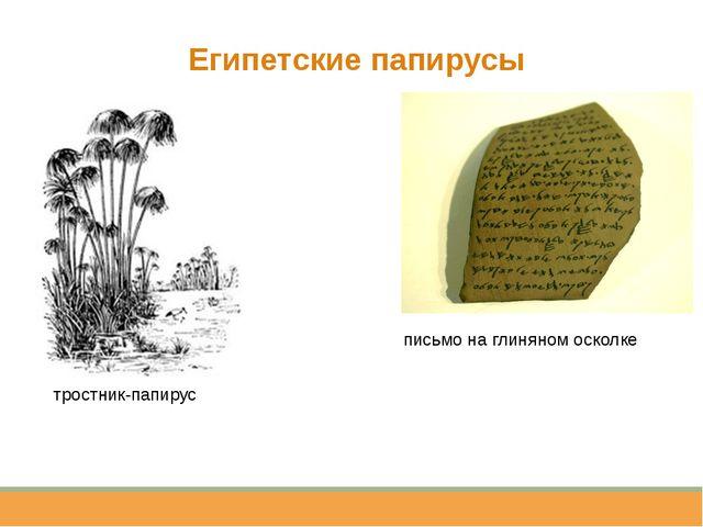 Египетские папирусы тростник-папирус письмо на глиняном осколке