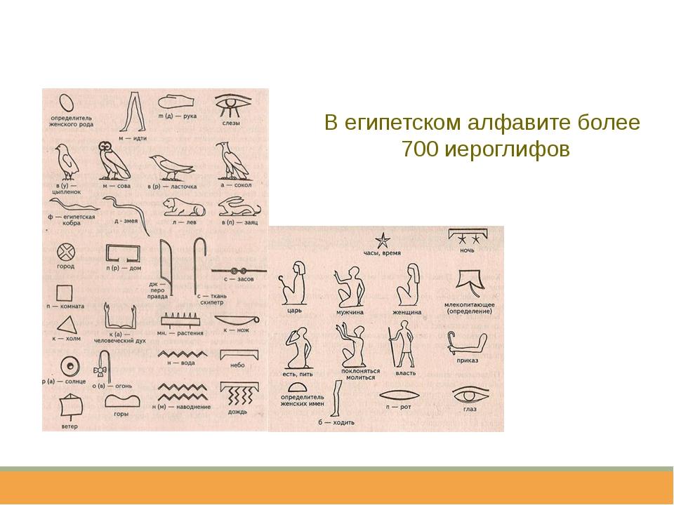 В египетском алфавите более 700 иероглифов
