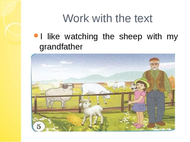 Work with the text I like watching the sheep with my grandfather