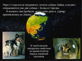 Через 3 года после неудачного полета собаки Лайки, в космос отправляются уже