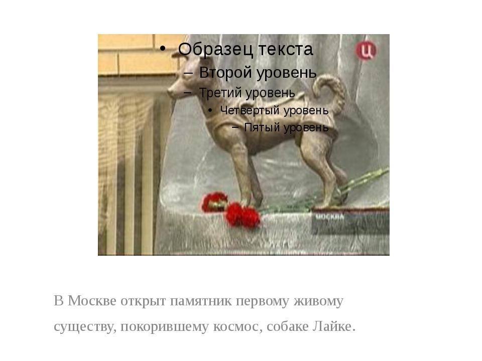 В Москве открыт памятник первому живому существу, покорившему космос, собаке...