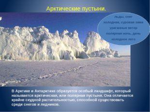 Арктические пустыни. В Арктике и Антарктике образуется особый ландшафт, котор