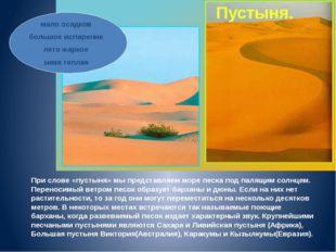 При слове «пустыня» мы представляем море песка под палящим солнцем. Переносим