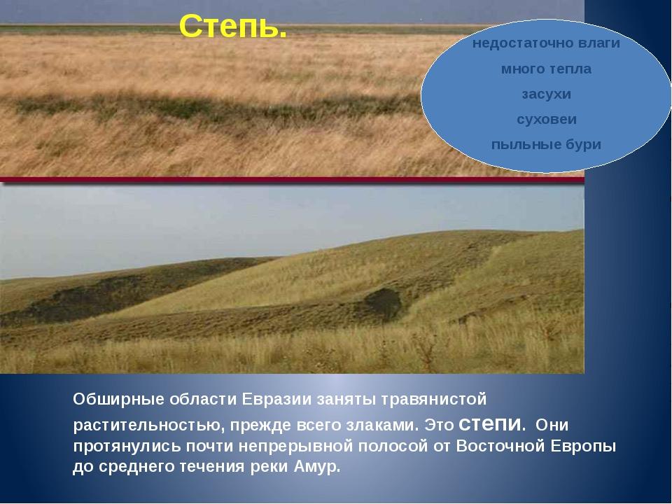 Обширные области Евразии заняты травянистой растительностью, прежде всего зла...