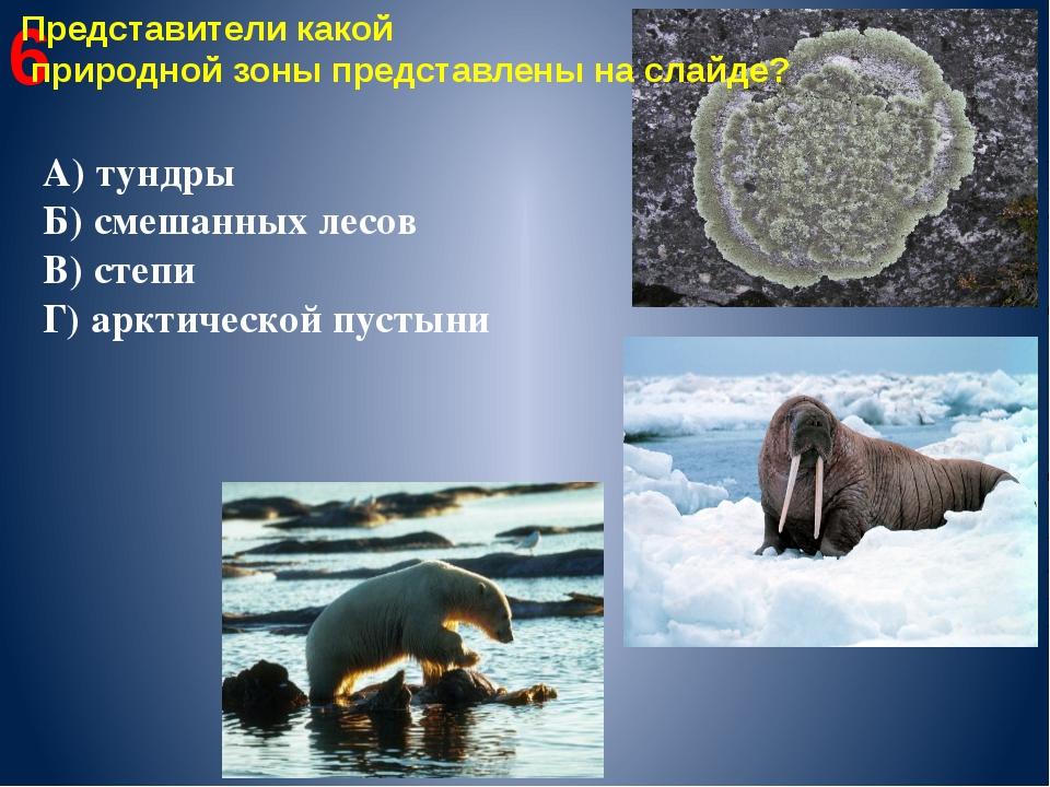 6 Представители какой природной зоны представлены на слайде? А) тундры Б) сме...