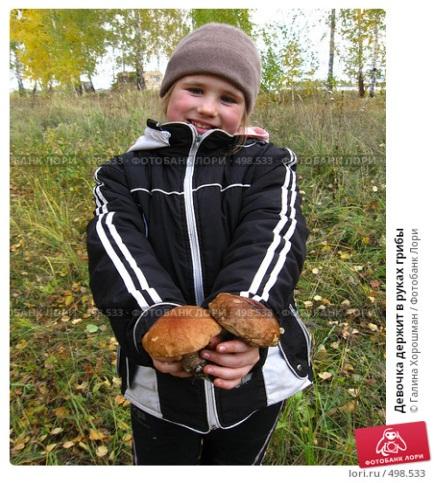 Девочка держит в руках грибы; фото 498533, фотограф Галина Хорошман. Фотобанк Лори - Продажа фотографий, иллюстраций и изображен