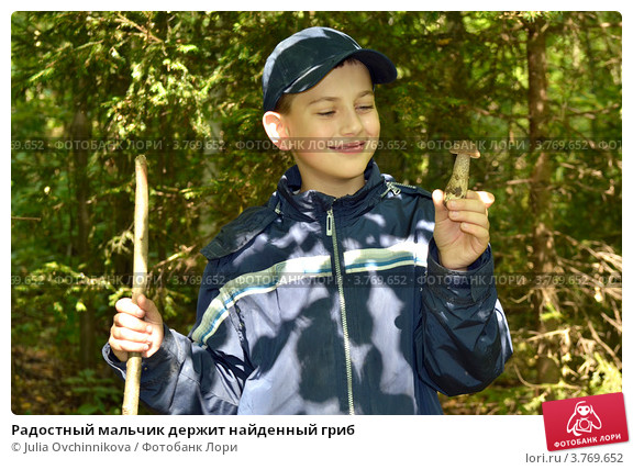 Радостный мальчик держит найденный гриб; фото 3769652, фотог…