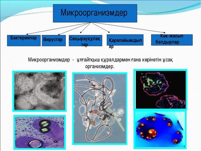 Микроорганизмдер - ұлғайтқыш құралдармен ғана көрінетін ұсақ организмдер. Көк...