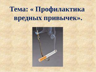 Тема: « Профилактика вредных привычек».