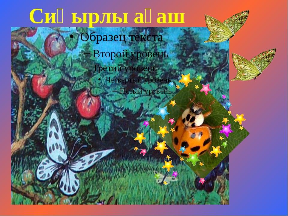 Сиқырлы ағаш