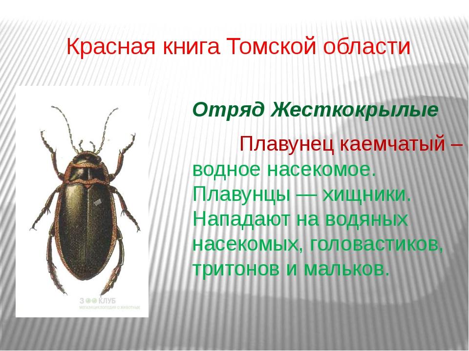 Красная книга Томской области Отряд Жесткокрылые Плавунец каемчатый – водно...
