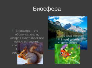 Биосфера Биосфера – это оболочка земли, которая охватывает все живые организ