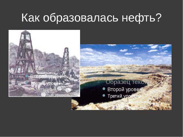 Как образовалась нефть?