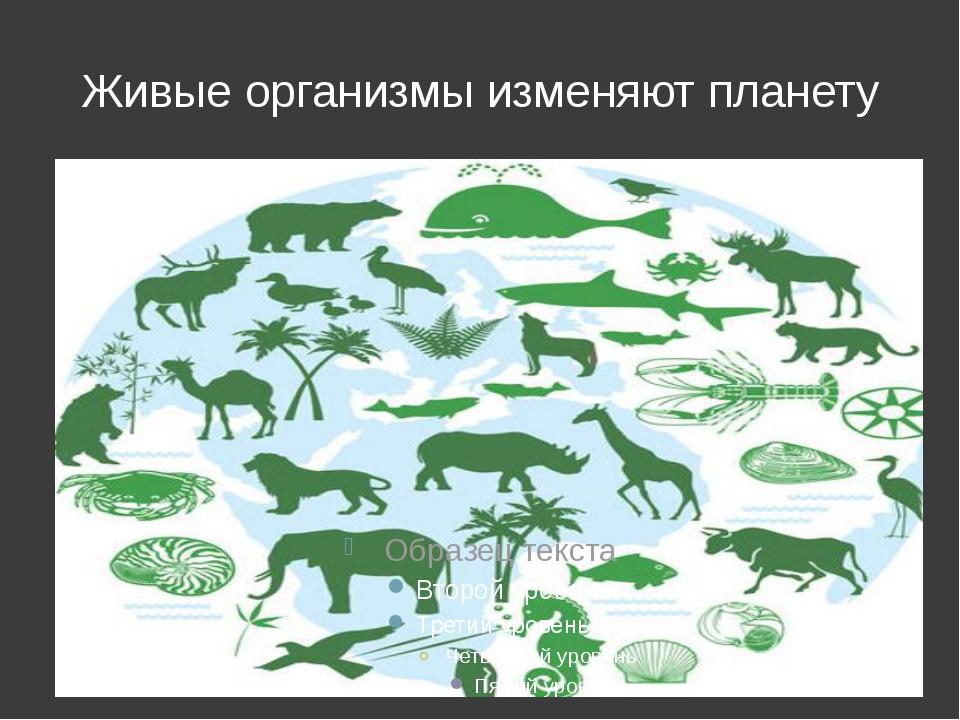 Живые организмы изменяют планету