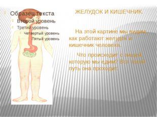 ЖЕЛУДОК И КИШЕЧНИК. На этой картине мы видим, как работают желудок и кишечни