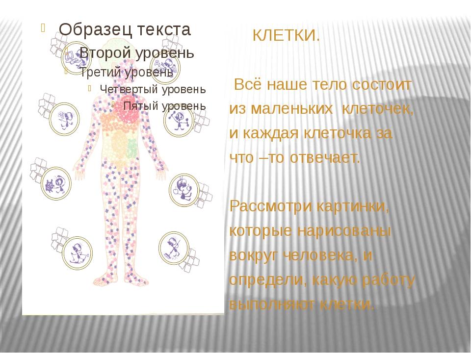 КЛЕТКИ. Всё наше тело состоит из маленьких клеточек, и каждая клеточка за чт...