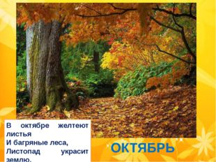 ОКТЯБРЬ В октябре желтеют листья И багряные леса, Листопад украсит землю. Ах
