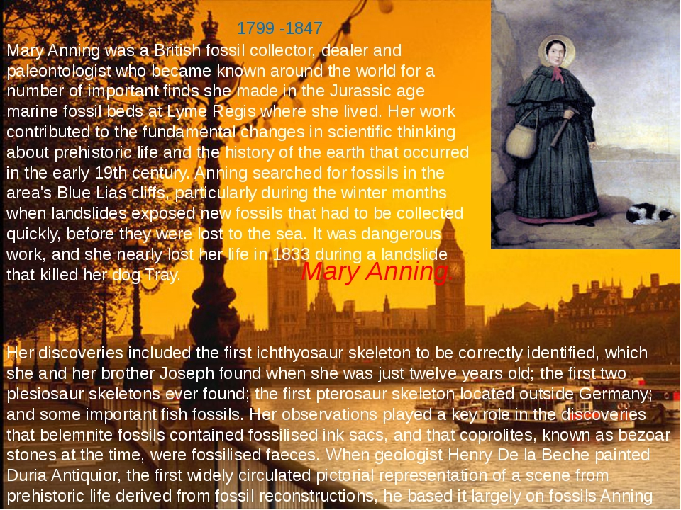Mary Anning. Mary Anning was a British fossil collector, dealer and paleontol...