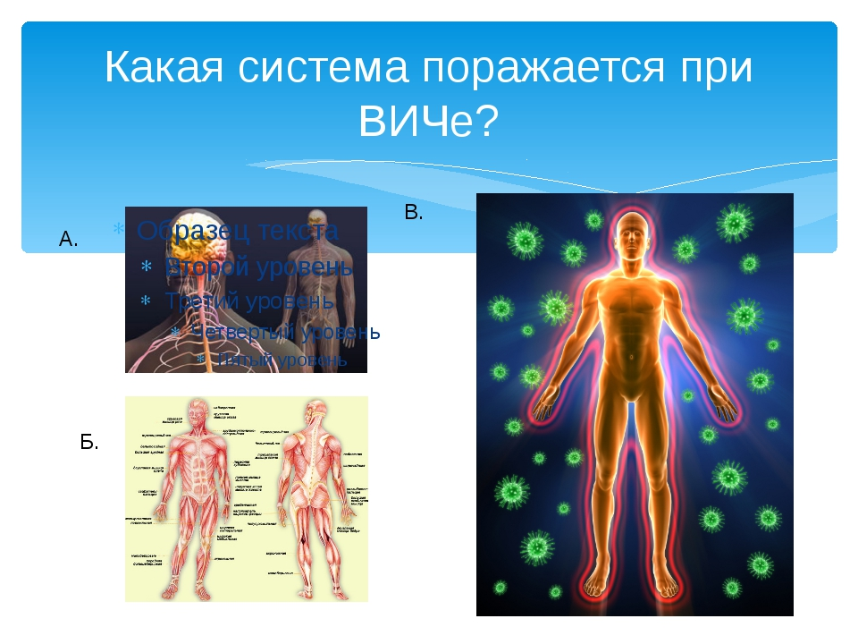 Какая система поражается при ВИЧе? А. Б. В.