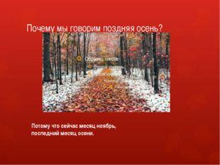 Почему мы говорим поздняя осень? Потому что сейчас месяц ноябрь, последний ме
