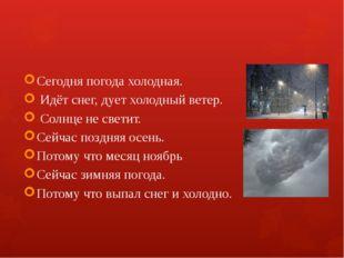 Сегодня погода холодная. Идёт снег, дует холодный ветер. Солнце не светит. С