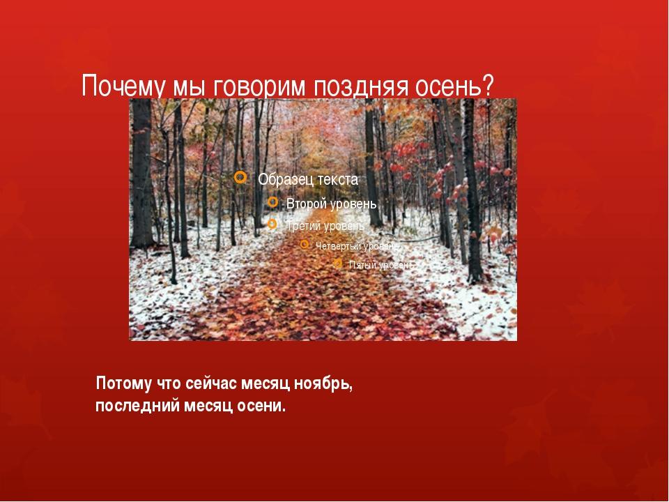 Почему мы говорим поздняя осень? Потому что сейчас месяц ноябрь, последний ме...