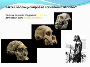 Как же эволюционировал собственно человек? Самыми ранними предками (6 – 3 млн