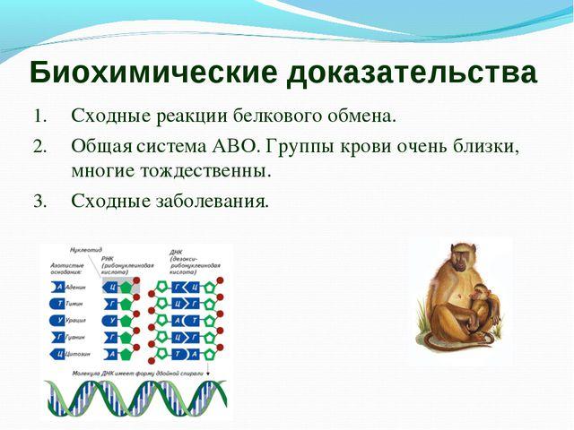 Биохимические доказательства Сходные реакции белкового обмена. Общая система...