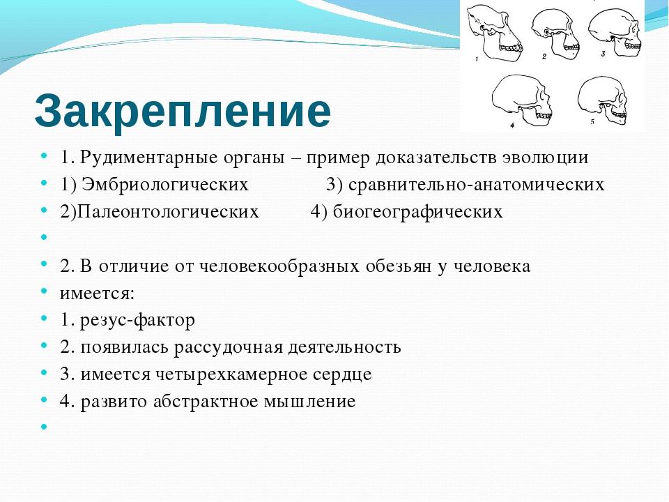 Закрепление 1. Рудиментарные органы – пример доказательств эволюции 1) Эмбрио...