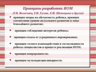 Принципы разработки ИОМ (Т.В. Волосовец, Т.Н. Гусева, Л.М. Шипицына и другие)
