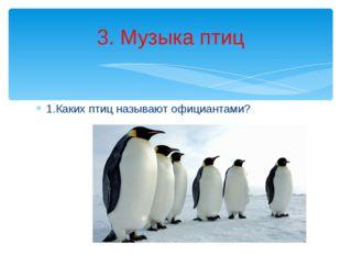 1.Каких птиц называют официантами? 3. Музыка птиц