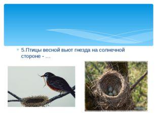 5.Птицы весной вьют гнезда на солнечной стороне - …