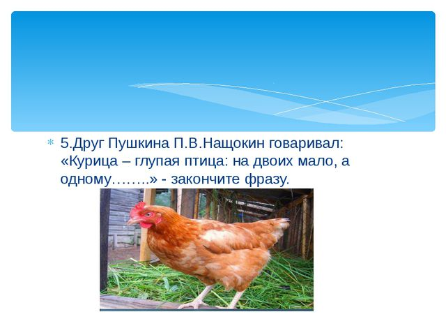 5.Друг Пушкина П.В.Нащокин говаривал: «Курица – глупая птица: на двоих мало,...