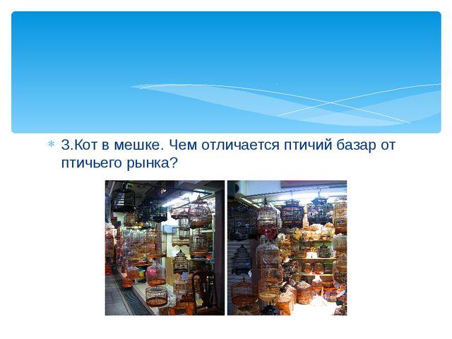 3.Кот в мешке. Чем отличается птичий базар от птичьего рынка?
