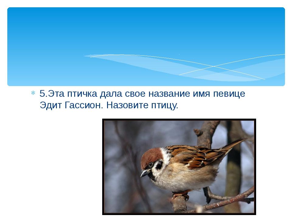 5.Эта птичка дала свое название имя певице Эдит Гассион. Назовите птицу.