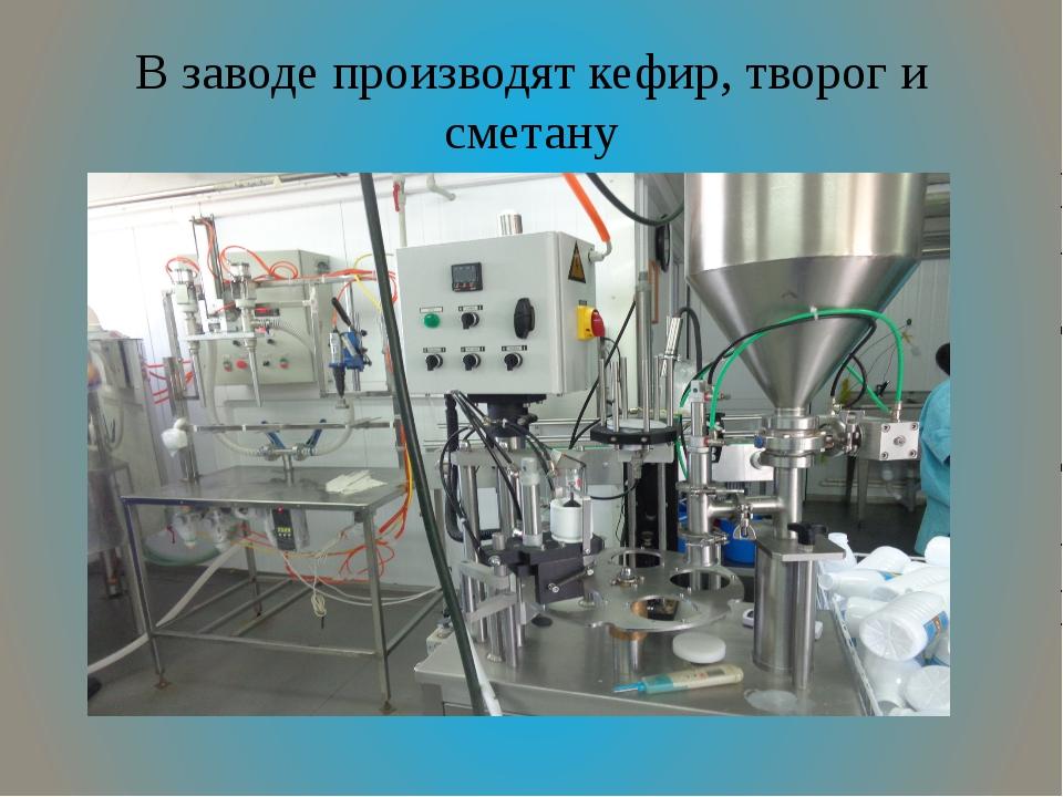 В заводе производят кефир, творог и сметану