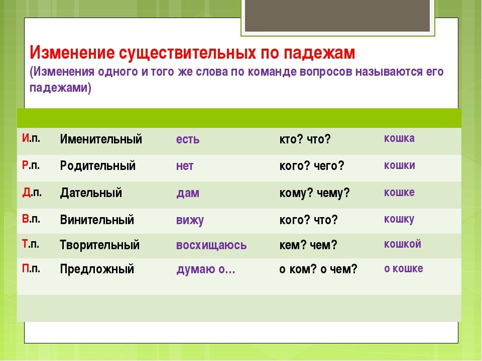 Изменение существительных по падежам (Изменения одного и того же слова по ко...